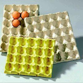 Vormkarton : trays – deksels